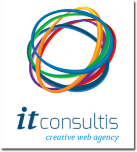 logo it consultis