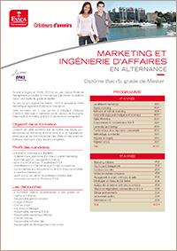 Programme en alternance ESSCA - Marketing et Ingénierie d'Affaires