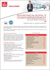 Sourcing & Supply Chain Management en apprentissage, diplôme Bac+5, grade de Master