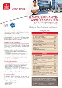Banque finance assurance - programme par alternance ESSCA